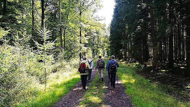 Wandern für Trauernde mit SPES VIVA